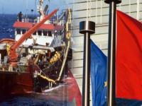 """حذيفة أمزيان : اتفاقيتا الفلاحة والصيد البحري: قرار محكمة الاتحاد الأوروبي """" لن يكون له أثر عملي """""""