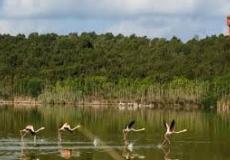 إحداث وتدبير المنتزهات الوطنية يعاني من أوجه قصور مختلفة